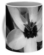Corn Lily Named Giant Coffee Mug