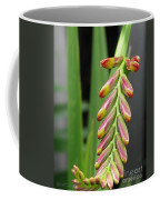 Crocosmia Named Lucifer Coffee Mug