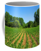 Cultivated Land Coffee Mug by Carlos Caetano