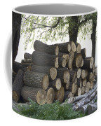 Cut Tree Trunks Piled Up For Further Processing After Logging Coffee Mug