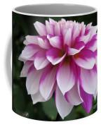 Dahlia Named Brian Ray Coffee Mug