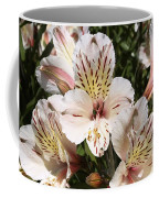 Desert Willow Coffee Mug