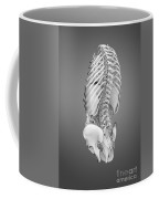Digestive System And Bones Coffee Mug