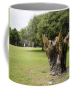 Dolphin Tree In Melbourne Beach Florida Coffee Mug by Allan  Hughes