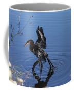 Drying Anhinga Coffee Mug