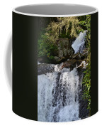 Dukes Creek Falls Coffee Mug
