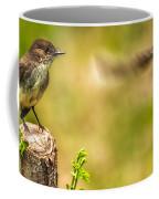 Eastern Phoebe Coffee Mug by Bob Orsillo