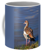 Egyptian Goose Coffee Mug