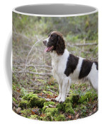 English Springer Spaniel Dog Coffee Mug