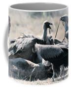 Eurasian Griffon Vulture Gyps Fulvus Coffee Mug
