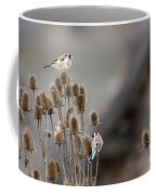 European Goldfinch Coffee Mug