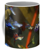 Fancy Guppys Coffee Mug