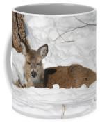 Fawn In The Snow Coffee Mug