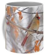 Female Cardinal In Winter Coffee Mug