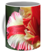 Flaming Parrot Tulip Coffee Mug