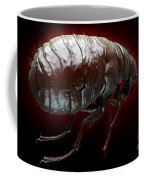 Flea Pulex Irritans Coffee Mug