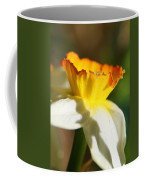 Floral Cup  Coffee Mug