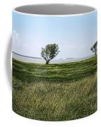 Florida Bay Everglades Coffee Mug