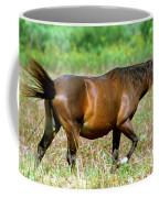 Florida Spanish Horse Coffee Mug
