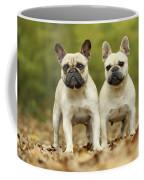 French Bulldogs Coffee Mug