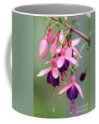 Fuchsia Named Lambada Coffee Mug