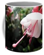 Fuchsia Named Liebelei Coffee Mug