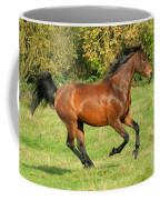 Gallop Coffee Mug