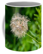 Goat's Beard Coffee Mug