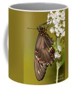 Gold Rim Swallowtail Butterfly Coffee Mug