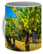 Grapes On The Vine Coffee Mug by Jeff Swan