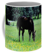 Grazing Horse In The Flowers Coffee Mug