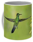Green-crowned Brilliant Coffee Mug