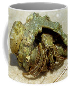 Green Striped Hermit Crab Coffee Mug