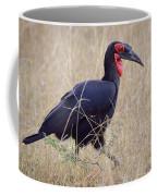 Ground Hornbill Coffee Mug