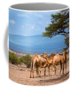 Group Of Camels In Africa Coffee Mug