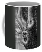 Growth On The Survivor Tree In Black And White Coffee Mug