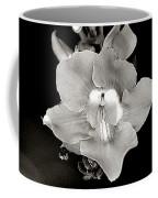 Heirloom Coffee Mug
