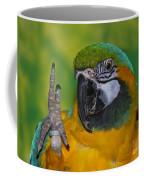 Hello... Coffee Mug