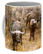 Herd Of Cape Buffaloes Syncerus Caffer Coffee Mug
