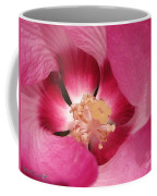 Hibiscus Moscheutos Named Luna Pink Swirl Coffee Mug