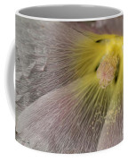 Hollyhock Named Indian Spring Pink Coffee Mug