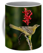 Hooded Oriole Juvenile Coffee Mug