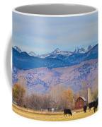 Hot Air Balloon Rocky Mountain Country View Coffee Mug