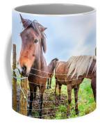 Icelandic Ponies Coffee Mug
