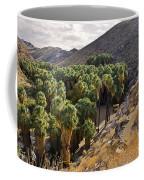 Indian Canyons - California Coffee Mug