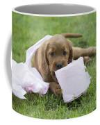 Irish Setter Puppy Coffee Mug