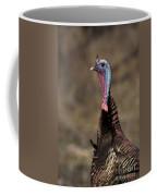 Jake Eastern Wild Turkey Coffee Mug