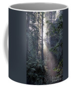 Jedediah Smith Redwoods State Park Redwoods National Park Del No Coffee Mug