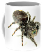 Jumping Spider Coffee Mug