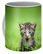 Kitty In Grass Coffee Mug